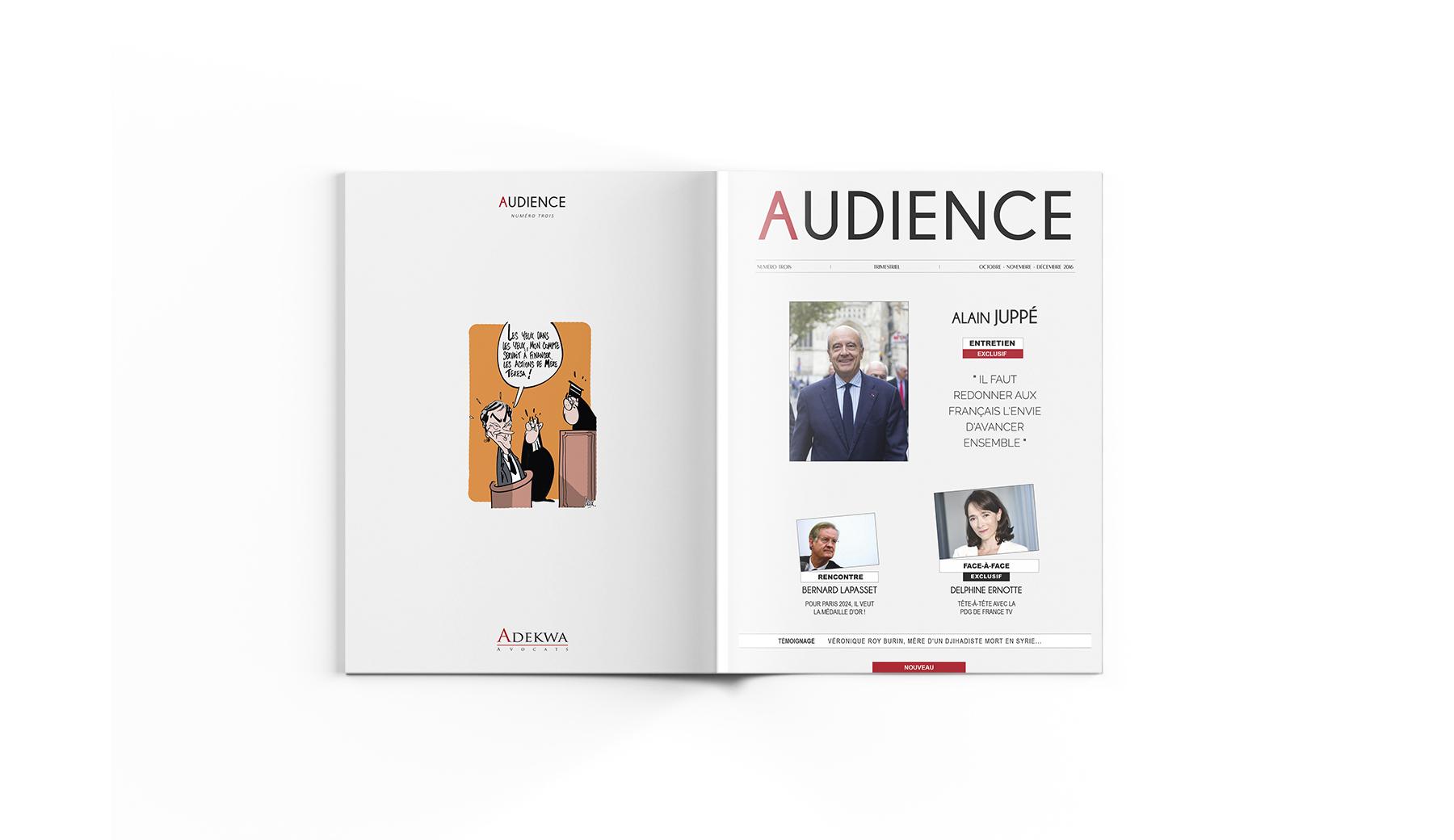 ADEKWA Avocats - AUDIENCE